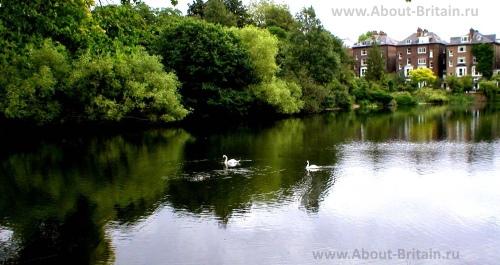 Парк Hampstead Heath